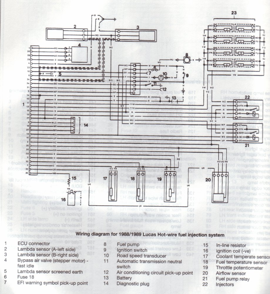Which Wires On A3 9 Efi Loom - International Forum